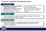 panel one capabilities and capacities system