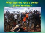 what was the rose s colour of the yorkists