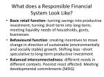 what does a responsible financial system look like