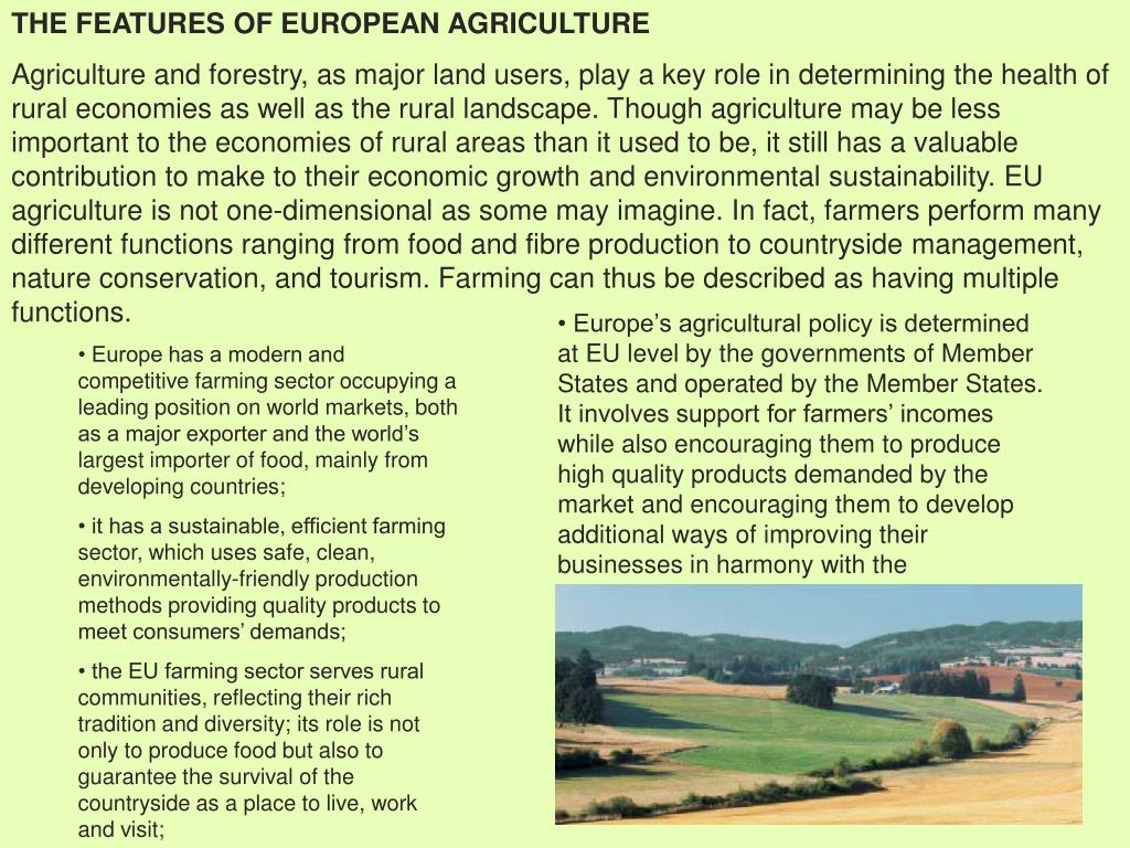 THE FEATURES OF EUROPEAN AGRICULTURE