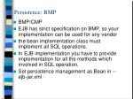 persistence bmp