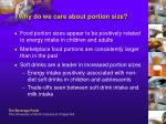 why do we care about portion size