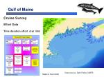 gulf of maine18