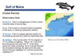 gulf of maine8
