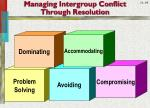 managing intergroup conflict through resolution