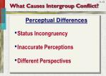 what causes intergroup conflict2