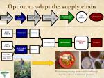 option to adapt the supply chain1