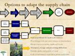 options to adapt the supply chain