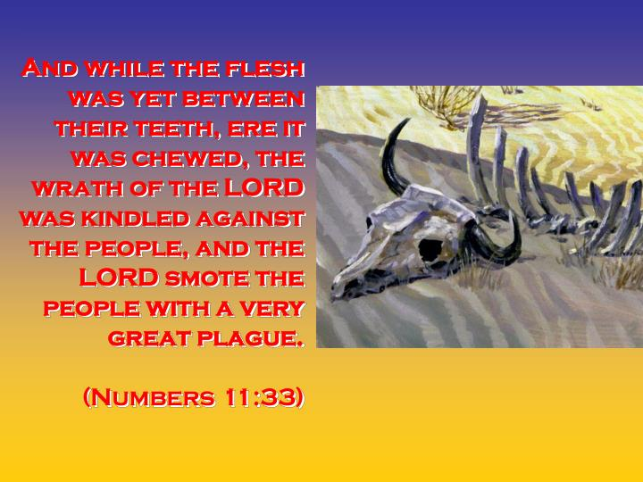 And while the flesh was yet between their teeth, ere it was chewed, the wrath of the LORD was kindle...