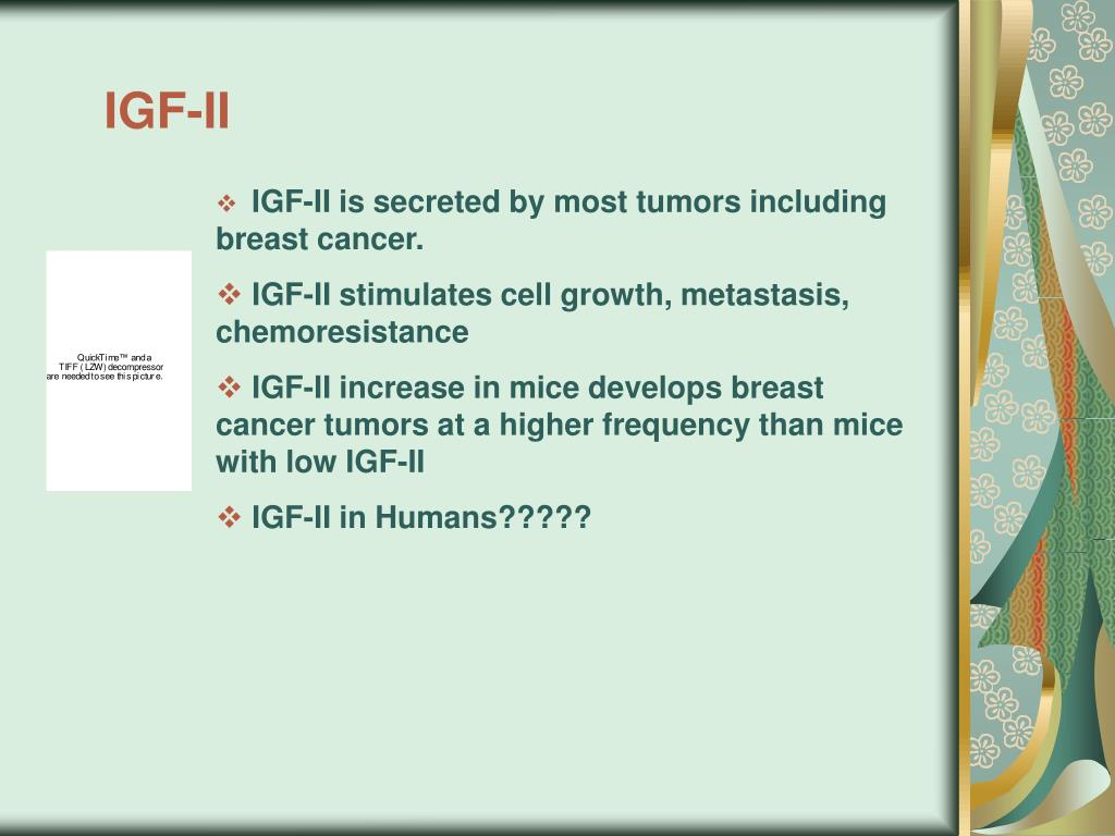 IGF-II