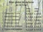 bilan global de carbone en gt c an