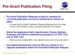 pre grant publication filing