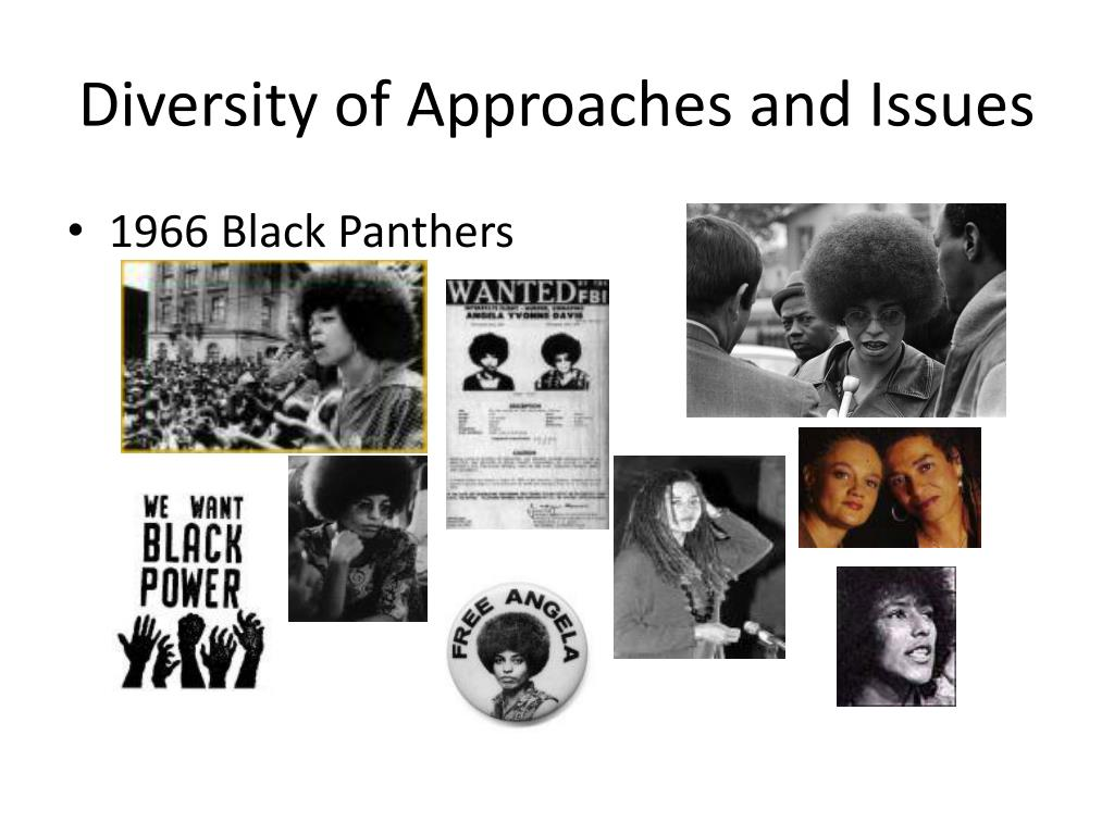 Diversity of Approaches and Issues