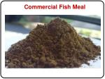 commercial fish meal