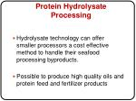 protein hydrolysate processing