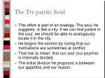 the tri partite soul
