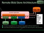 remote blob store architecture