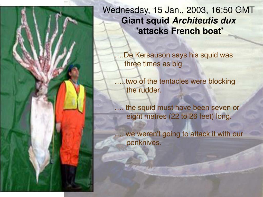 Wednesday, 15 Jan., 2003, 16:50 GMT