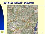 business robbery sandown