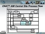 cnatt aim central site process flow