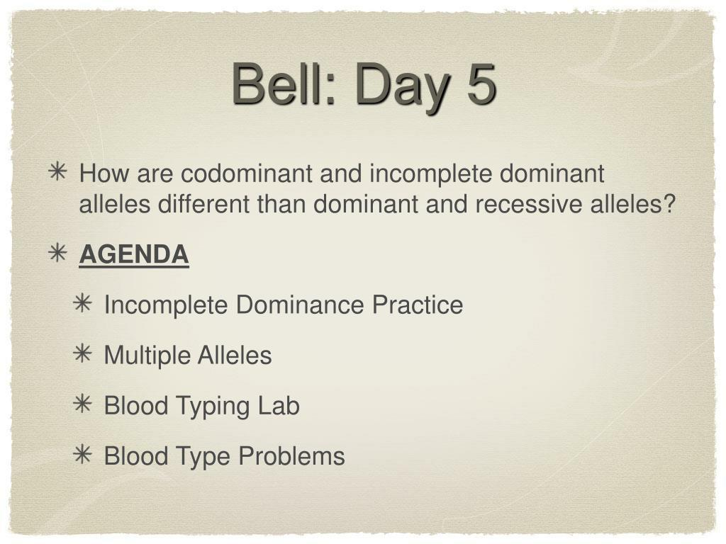 Bell: Day 5