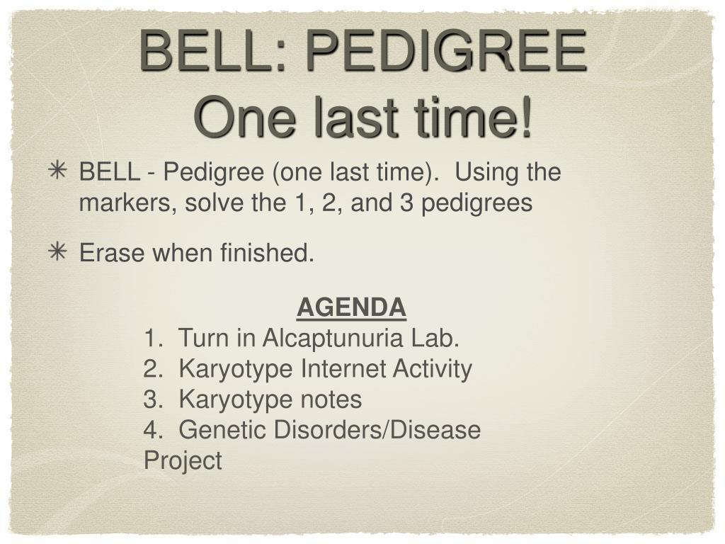 BELL: PEDIGREE