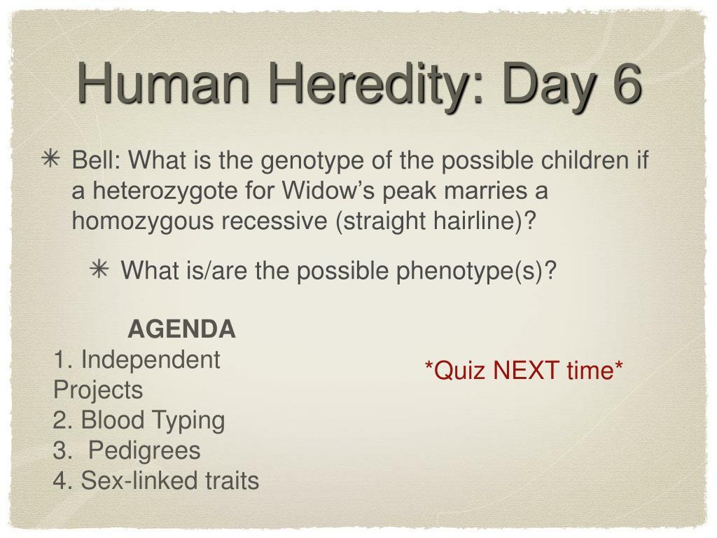 Human Heredity: Day 6