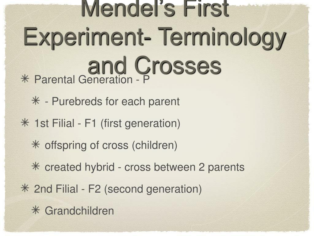 Mendel's First Experiment- Terminology and Crosses