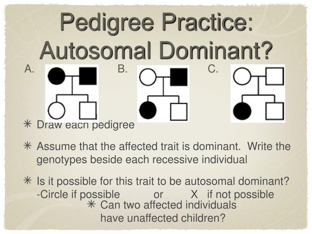 Pedigree Practice: Autosomal Dominant?
