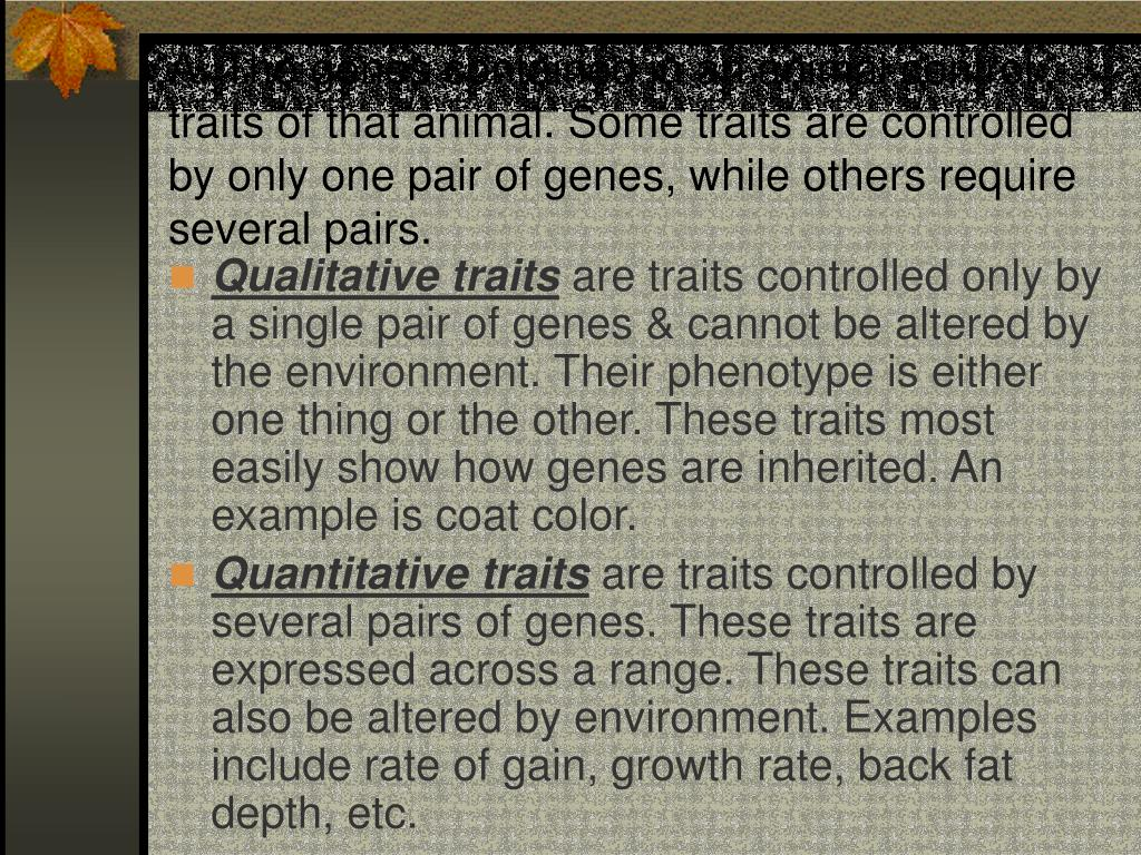 A. The genes contained in an animal control traits of that animal. Some traits are controlled by only one pair of genes, while others require several pairs.