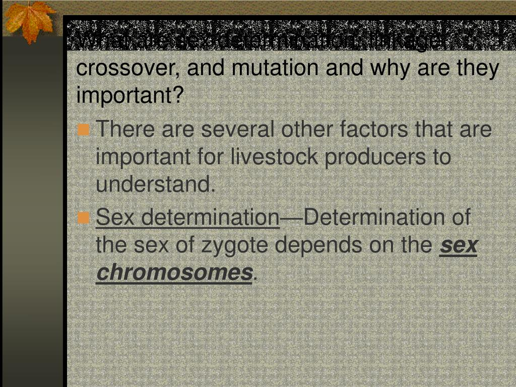 What are sex determination, linkage, crossover, and mutation and why are they important?