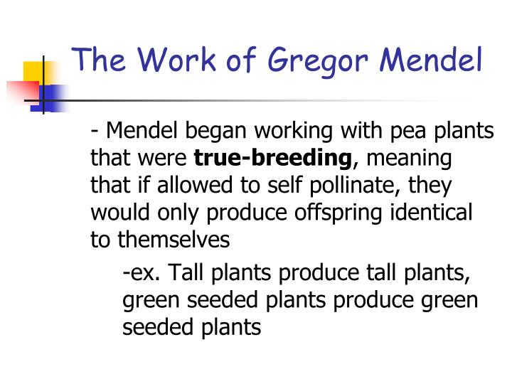 The work of gregor mendel3