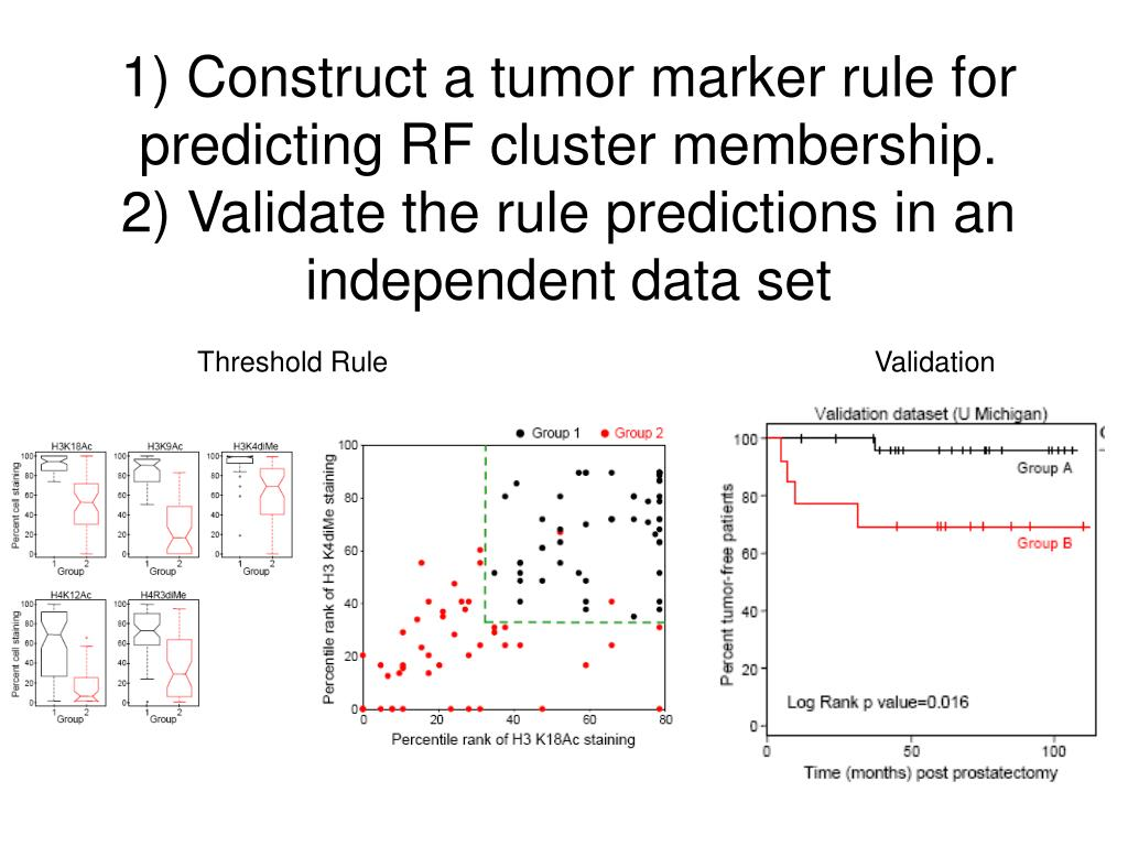 1) Construct a tumor marker rule for predicting RF cluster membership.