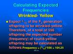 calculating expected frequencies wrinkled yellow