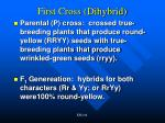 first cross dihybrid