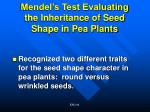 mendel s test evaluating the inheritance of seed shape in pea plants
