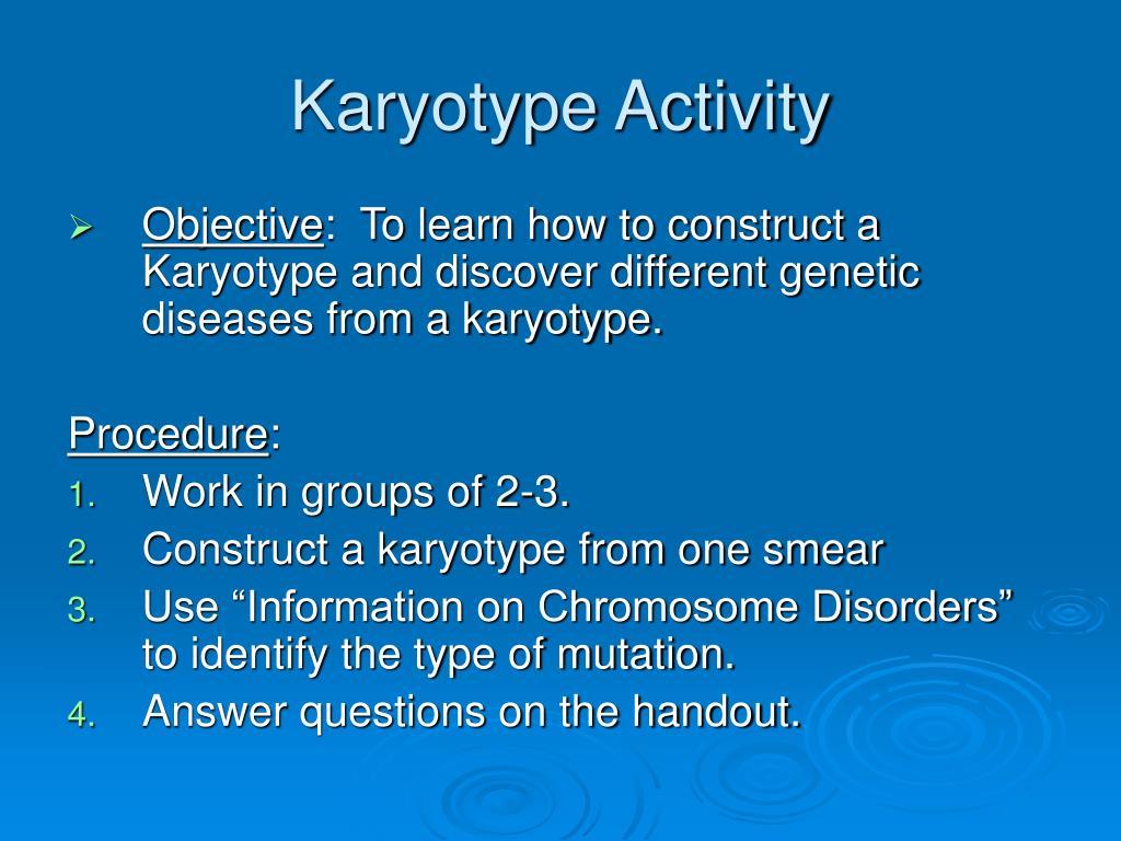 Karyotype Activity