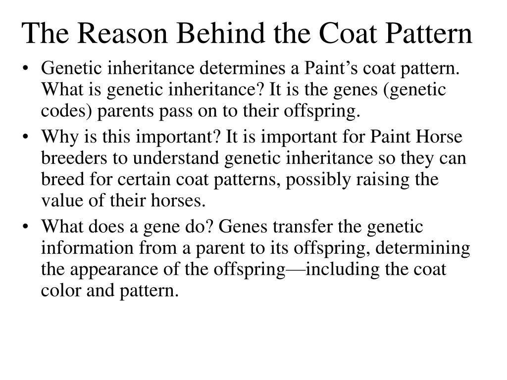 The Reason Behind the Coat Pattern