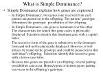 what is simple dominance