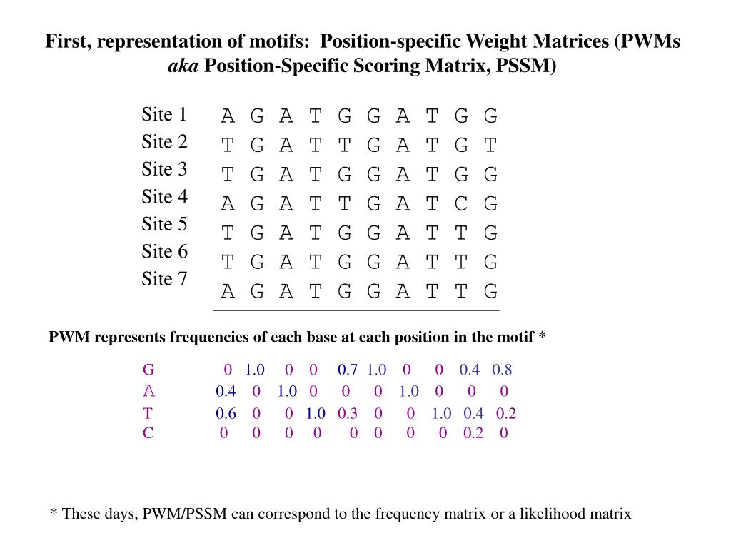 First, representation of motifs:  Position-specific Weight Matrices (PWMs