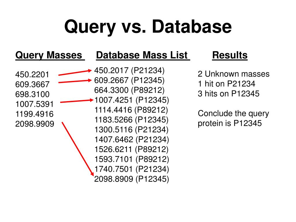 Query vs. Database