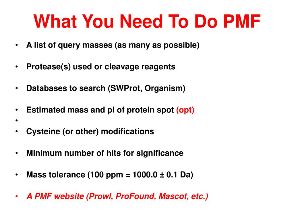 What You Need To Do PMF