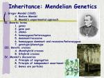 inheritance mendelian genetics
