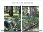 destructive sampling