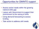 opportunities for gwinto support