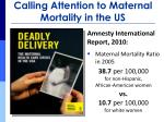 calling attention to maternal mortality in the us