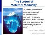 the burden of maternal morbidity