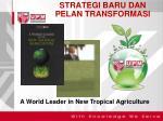 strategi baru dan pelan transformasi