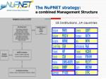 the nupnet strategy a combined management structure