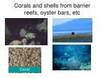corals and shells from barrier reefs oyster bars etc